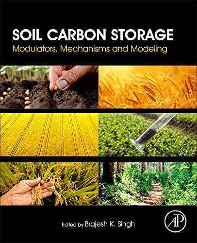 Soil Carbon Storage (Environmental Soil Chemistry)