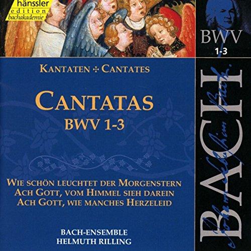 Edition Bachakademie Vol. 1 (Geistliche Kantaten BWV 1-3)