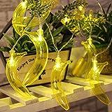 Skisneostype Guirlande Lumineuse Exterieur/Interieur Lumières de Fruit Guirlande Lumineuse pour Chambre Salon Balcon Romantique Déco Ambiance Noël Mariage Soirée Anniversaire Fête(1.5m Banane)
