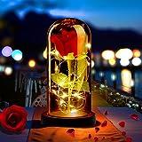 ASANMU Kit de Rosas, Rosa Eterna Bella y la Bestia Rosa de Seda Roja y luz LED con Pétalos Caídos en Cúpula de Cristal sobre