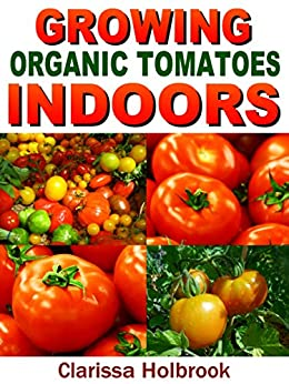 how to grow tomatoes indoors year round