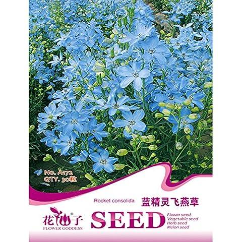 Bluelover 30pcs Delphinium azul flor semillas semillas de planta de flores de jardín