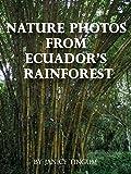 Nature Photos from Ecuador's Rainforest