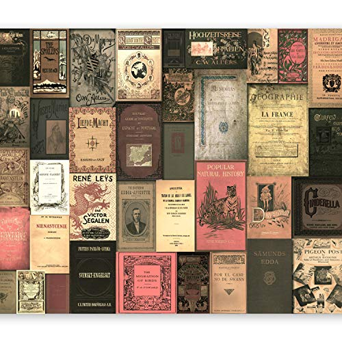 Retro-moderne-tapete (murando - Fototapete 300x210 cm - Vlies Tapete - Moderne Wanddeko - Design Tapete - Wandtapete - Wand Dekoration - Vintage Retro Buch m-C-0242-a-b)
