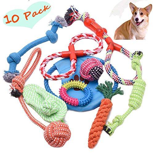 Hundespielzeug Kauspielzeug Interaktives Spielzeug Baumwollknoten Spielset für Kleine und Mittlere Hunde, Wasserdicht 10 Teile feierna