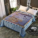 Simmia Home Kuscheldecke Wohndecke Nerzdecke Webpelzdecke Tagesdecke Raschel Decke Doppelschicht Sofa Decke Winter Bestickt Leo 200 * 230cm