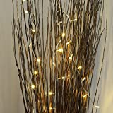 Indoor Fairy Lights - 40 Warm White LEDs - Clear Cable by Festive Lights Bild 3