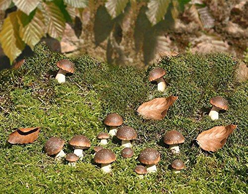 Set di 15 funghi porcini decorativi, color cappuccino