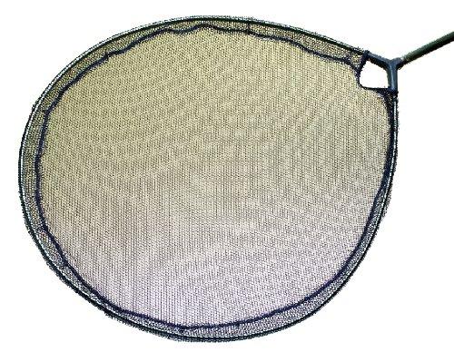Blagdon Interpet Pond 55cm Koi Flat Inspection Head Net (Interpet Koi)