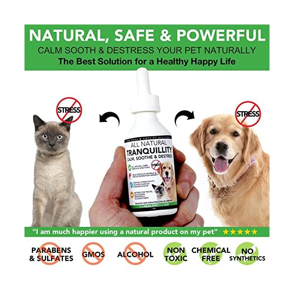 The Healthy Dog Co Tranquillity | All Natural Calming Drops for Dogs & Cats  | 50-100 Servings | Healthiest Calming Aid For Pets Who Need Stress &