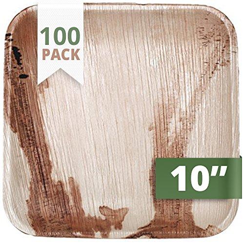 CaterEco 100 Stück Quadratische Palmblatt Einwegteller, 25 cms | kompostierbares Einweggeschirr für Hochzeit, Büro und Festen| Umweltfreundlicher als Bambusteller