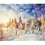 Kate Mikrofaser Fotografie Hintergrund Winter Vintage Forest Hintergründe Snow Foto Hintergrund Boken