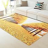 MAFYU Qualität Teppich 3D Druck Quadratmeter Teppich Matte Wohnzimmer Couchtisch Mat Küche Schlafzimmer Badezimmer Anti-Rutsch Matte