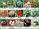 Gemüse Set 2: Broccoli Pastinaken Blumenkohl Gurken Cantaloupe-Melone Zucchini Rote Bete Aubergine ... Samen Saatgut