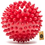 The Dogs Company Natural Rubber Spiked Ball Dog Chew Toy, Puppy Teething Toy, 3 Inches