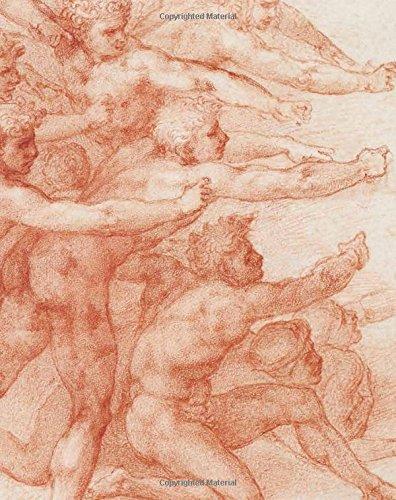 Michelangelo : Divine Draftsman and Designer