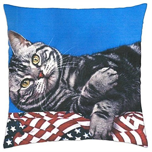 a-cat-laying-on-a-bunning-throw-pillow-cover-case-18-x-18
