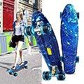 """Acecoree 55cm Mini Cruiser Skateboard mit LED Leuchtrollen, 22"""" Retro Komplettboard in verschiedenen Farben für Erwachsene Jugendliche Kinder Jungen Mädchen"""