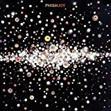 Songtexte von Phish - Joy