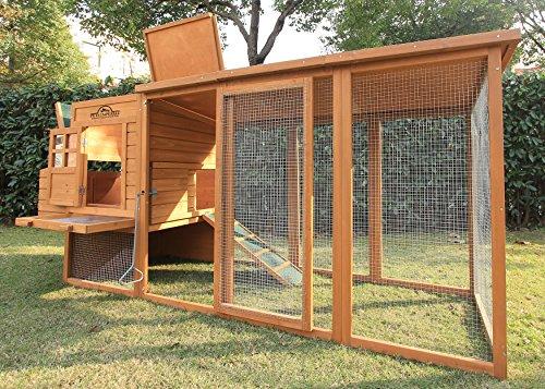 Pets Imperial® Arlington Hühnerstll mit extra langen Auslaufflächen 8ft/2,5m und Asphaltabdeckung geeignet für 4/6 Vögel je nach Größe - 4