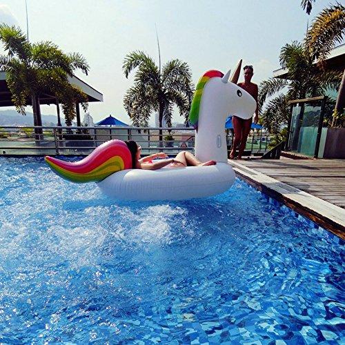 Schwimmtier – Kexin Lin – KEXIN - 4