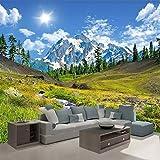 Wandgemälde Schneeberg Plateau Naturlandschaft 3D Fototapete Benutzerdefinierte Wandbild Wand Papier Wohnzimmer Sofa Schlafzimmer Tv Hintergrund Wohnkultur,60Cm(H)×120Cm(W)
