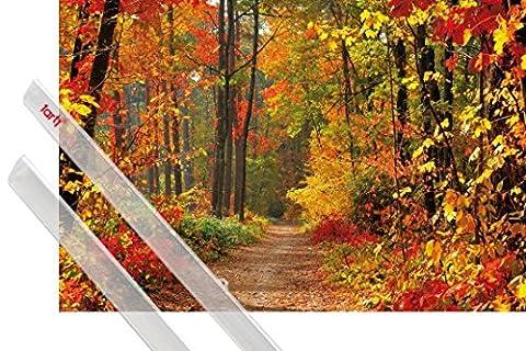 Poster De Foret - Poster + Suspension : Forêts Poster (91x61