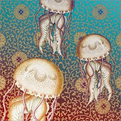 Reproduction sur toile 50 x 50 cm: Jelly Belly de Mandy Reinmuth - Reproduction prête à accrocher, toile sur châssis, image sur toile véritable prête à accrocher, reproduction sur toile