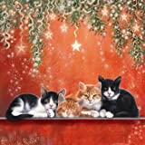 'Warm Glow' Black & White and Ginger Cat 10 pack of small square Christmas cards
