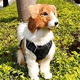 Yudote verstellbar weich mesh Gepolsterte kein Pull Hundegeschirr Reflektierende Pet Weste mit Control Griff und vorne, hinten Clips für mittlere Hunde Easy Walk & Running