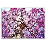 ge Bildet® hochwertiges Leinwandbild XXL Naturbilder Landschaftsbilder - Rosa Lapacho Baum in Pocone - Brasilien - Natur Baum Pink Lila - 100 x 70 cm einteilig 2213 B