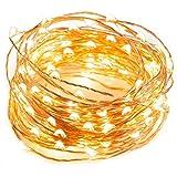 Pekyok LD02 Starry LED Lichterkette 10m / 33ft, 13 Tasten 8 Modi Timer Fernbedienung leuchtet mit Batterie, 100 LEDs wasserdichtes Funkelnlicht für Party, Weihnachten, Valentinstag - Warm Weiß
