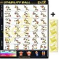 Eazy wie zu Stabilität Ball Workout Poster Big 50,8x 71,1cm Zug Ausdauer, Ton, Build Stärke & Muscle Home Gym Diagramm von Eazy How To