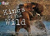 Kings of the Wild: Band 13/Topaz (Collins Big Cat)