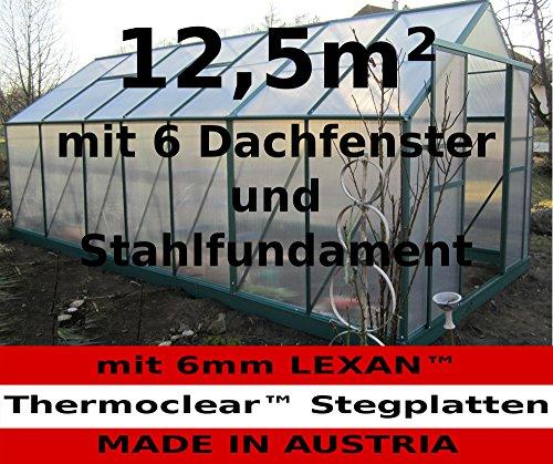 12,5m² PROFI ALU Gewächshaus Glashaus Treibhaus inkl. Stahlfundament u. 6 Fenster, mit 6mm Hohlkammerstegplatten – (Platten MADE IN AUSTRIA) von AS-S