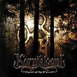 Songtexte von Korpiklaani - Spirit of the Forest