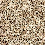 Compo 1096966004 Herbst Rasendünger mit Langzeitwirkung, 5 kg - 3