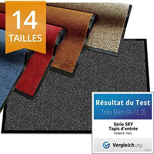 etm Tapis d'entrée série Premium | Tapis Antidérapant Absorbant & Lavable | Paillasson entrée Exterieur & Interieur | Anthracite 60x90cm
