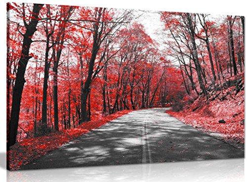 Noir et blanc Photo sur toile Road arbres Rouge Feuilles d'impression, noir/rouge/blanc, A3 46x31 cm (18x12in)