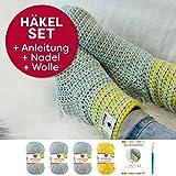 myboshi Häkelset Socken-Anleitung + Häkelnadel + Label + 4x Wolle (silber, löwenzahn, mit Häkelnadel)