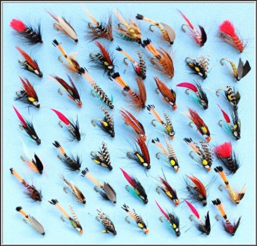 50Forellenangeln Nassfliegen Fliegen Set 80J + 84A