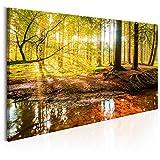 murando - Bilder 120x60 cm - Leinwandbild - 1 TLG - Kunstdruck - modern - Wandbilder XXL - Wanddekoration - Design - Wand Bild - Wald Baum Natur Landschaft c-B-0174-b-a