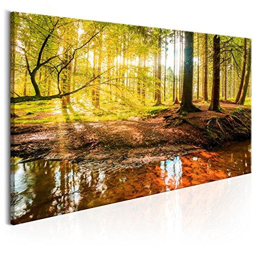 Wandbilder natur  Bilder Natur Landschaft: Amazon.de