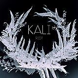 Songtexte von Kali - Riot