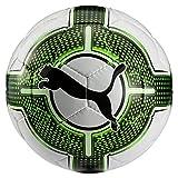 Puma Fußball EvoPower Lite 3 290 G