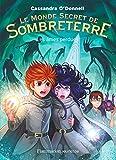 Le Monde secret de Sombreterre (Tome 3) - Les âmes perdues (French Edition)