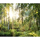 decomonkey Fototapete Wald grün 350x256 cm Tapete Wandbild Bild Fototapeten Tapeten Wandtapete Landschaft Natur