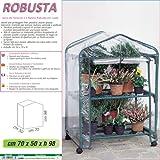 Betty Garden Serra NEW da Terrazzo a 2 Ripiani Robusta con Ruote - Serre per il Terrazzo