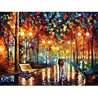 Tirzah Paint by Numbers Kits with 3X Magnifier Card 40 x 50cm Diy Acrylic Painting for Kids and Adults Beginner - Without Frame or Canvas is Pre-Mounted