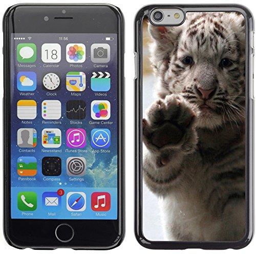 Graphic4You Baby Cat Tier Design Harte Hülle Case Tasche Schutzhülle für Apple iPhone 6 Plus / 6S Plus Design #5